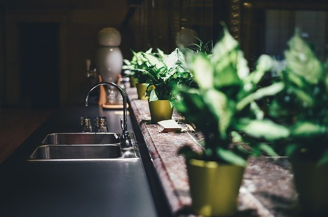 A vase of flowers on a kitchen counter
